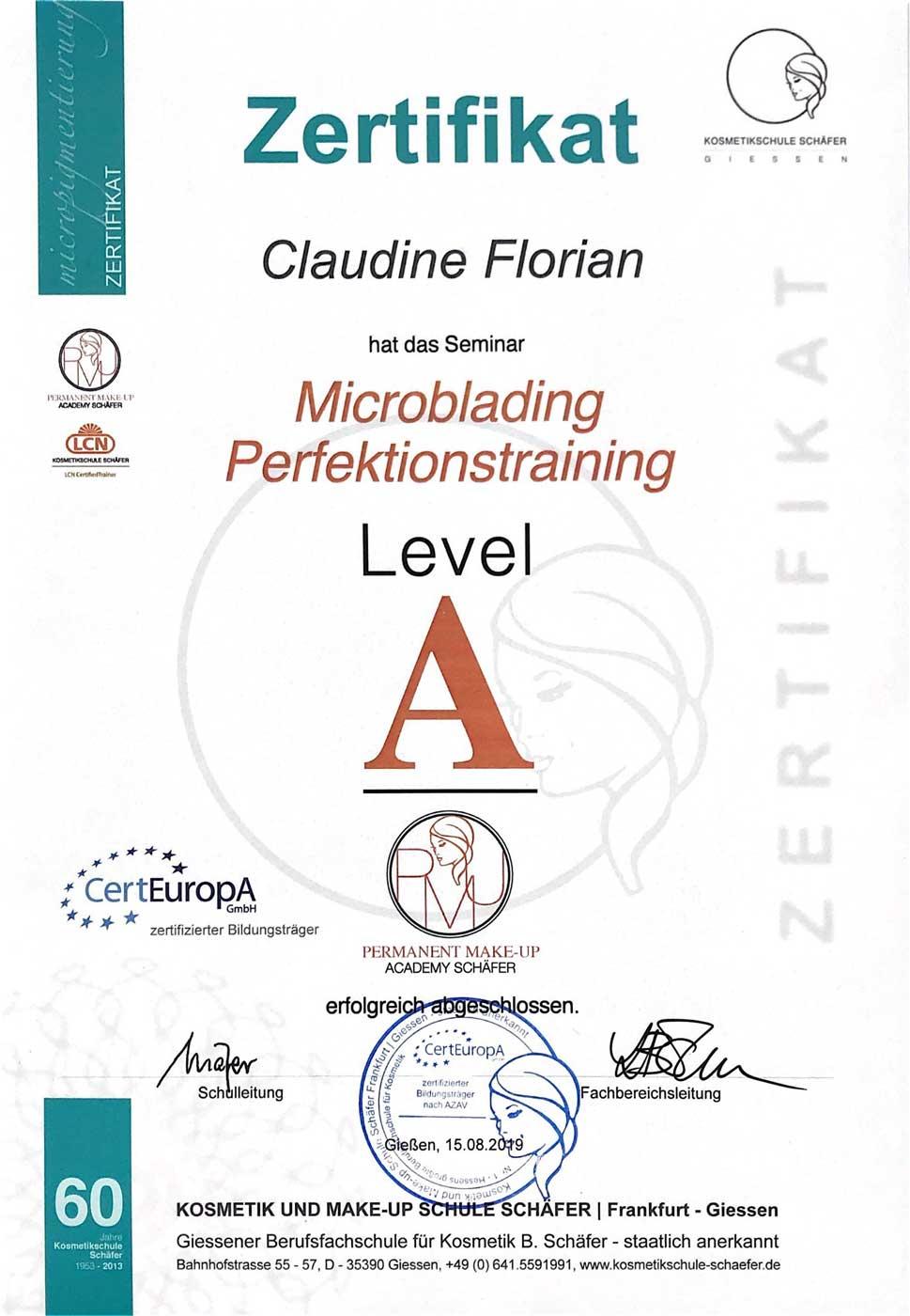 zertifikat_microblading